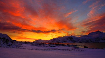 artic light Lofoten-